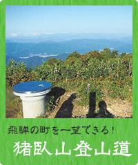 猪臥山(いぶせやま)登山道